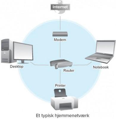 LAN netværk